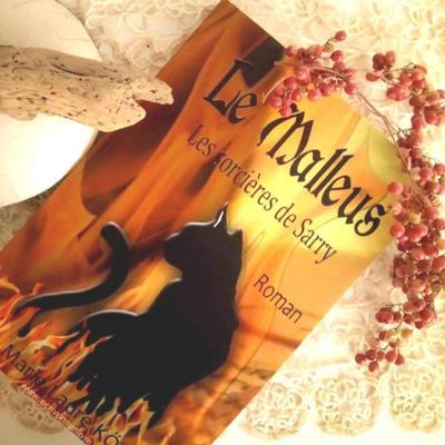 Le malleus les sorcieres de sarry marie laure konig