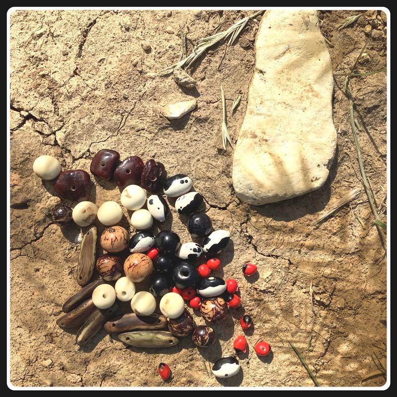 Perles vegetales